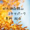 【今が見頃の紅葉スポット】びわこ函館山コキアパークの見所紹介