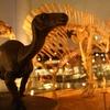 【'18.6.16_1525追記:ニュース】「福井)恐竜研究者育成へ、県立大大学院に古生物学コース」(朝日新聞)