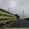 雨の日の三浦ドライブ