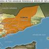 イエメンでのアルカイダ討伐作戦。トランプ政権に今何が起こっているのか