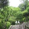 勝俣部長の「高尾登山と健康体質作り」619・・・・普段から行動を 変えておこう