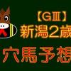 【GⅢ】新潟2歳S 結果 回顧