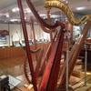 【世界の楽器の美に触れる】日本で唯一の楽器博物館(浜松)に行ってみた!
