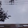 2019年3月11日(月)3.11春の嵐 鹿浜橋周回ライド24.33km