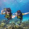 透明度No.1のラチャ2島でプーケット体験ダイビング