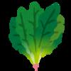 葉物野菜が高くて少々野菜が不足気味。体に優しいポタージュで元気だそう!