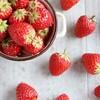 イチゴは栄養満点だった!イチゴの旬や豆知識やスイーツも紹介。