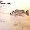 すずき(魚ばっかいの釣り図鑑4)