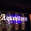 宙組・エルハポン&アクアヴィーテ 感想1 真風さんの黒髪長髪とはにかみ演技、大人の見事なウィスキーショー!
