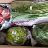 高級野菜セットをお取り寄せしたので中身を公開!