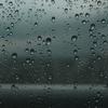 雨の日のおしゃれに!私がおすすめしたい傘と傘カバー4選