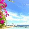 【お手軽リゾート】子連れセブ島旅行記2019年4月①