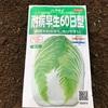 白菜種まき&スティックセニョール定植!