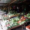 クンダサン(Kundasang)の野菜市場🍅🍆🥬🥕