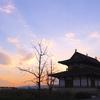 奈良旅 2020年冬 シルフィードと大地の都、エソテリ旅。Vol. 1