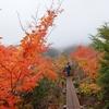 北関東屈指の紅葉スポットで火山とガスがコラボレーション @那須岳(隠居倉・茶臼岳)