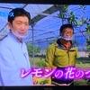 テレビ朝日 食彩の王国