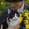 映画『旅猫リポート』65点/泣きたい人に/ネタバレ感想と評価