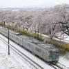 東北本線 -雪桜-