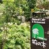 品川の超穴場!オーガニック食材にこだわった『Natural Cafe & Restaurant 椨の木』