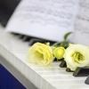 ピアノ教室と音楽教室
