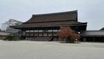 京都御所に行ってきた感想