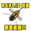 【DUO】ハードボディにラバーを組み合わせた虫系ルアー「REALIS 真虫」に新色追加!