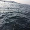 海の危険生物 オニカサゴ 刺されたらこんなに腫れた
