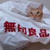 無印良猫2016