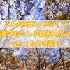 【那須】最新!ランチ・紅葉・温泉のおすすめ観光スポット3選(2016年版)