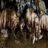 【タイ】チェンマイから約1時間半!「チェンダオ洞窟」に行ってきました