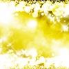 ✨Luce della Psyche 魂の光✨