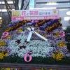 JRA 穴馬予想【福島競馬場 ラジオNIKKEI賞GⅢ予想】7月1日(日)