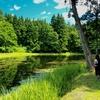 郡殿の池(新潟県小千谷)