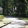 秋を探しに駒沢緑泉公園を「お写んぽ」。望遠ズームレンズM.ZUIKO DIGITAL ED 40-150mm F2.8 PRO