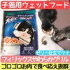 子猫用ウェットフード【フィリックスやわらかグリル】を子猫3兄弟に与えてみた!食べ応えが凄い!