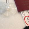 もしも航空券に「SSSS」と印刷されてしまったあなたは、FBIの要注意人物になっているかも……!? [ リーマントラベル研究所 #6 ]