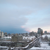 2月の写真109枚:February, 2019 - OLYMPUS PEN Lite