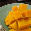 【太った】おからパウダーダイエット生活38日目 87.1kg +0.3kg 通算-1.0kg 目標まであと-9.2kg