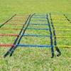 空手のステップワークを向上・改善!|パフォーマンスアップのためのラダートレーニング