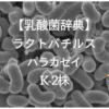 【乳酸菌辞典】ラクトバチルス・パラカゼイ・K-2株とは?働き・研究結果・配合サプリまとめ