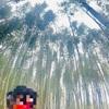 観光名所では人力車がオススメ!京都嵐山で乗った感想【えびす屋】