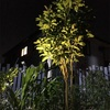 庭や玄関をお洒落セレブにライトアップ