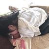 寝かしつけって大変・・子供ができて初めて知ったこと②【睡眠編】
