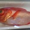 んまい魚を食べたい欲増して升………34日目