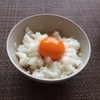 【TKG】卵かけご飯をいつもの10倍美味しく食べる方法は本当か?実際に試してみた!9/13 めざましテレビ