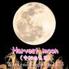 【週末英語#173】「中秋の名月」は英語で「Harvest moon」ちなみに中秋の名月は満月とは限らないよ