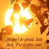 希望と恐れとの狭間での選択   〜ルカ12:22~32〜