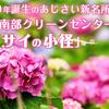 2020年誕生のあじさい新名所!京都市南部クリーンセンターの「アジサイの小径」