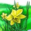 スイセンは「希望」の花